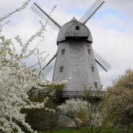 Ribbes Windmill